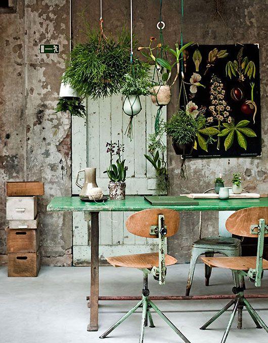 dining verde