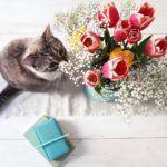 Cosa puoi imparare per il tuo biz dall'omino dei fiori