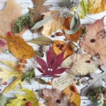 Amore è… scambiarsi foglie facciose